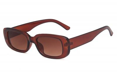 Women's Transparent Clear Brown Acetate Oval Rectangular Sunglasses